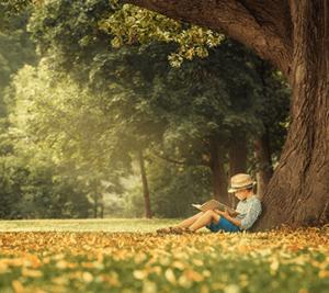 Poika lukee puun alla.